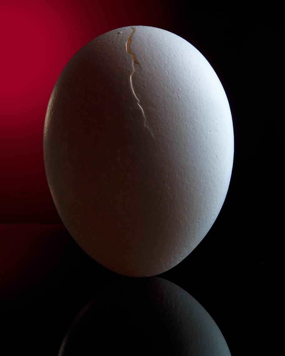 Cracked_Egg.jpg