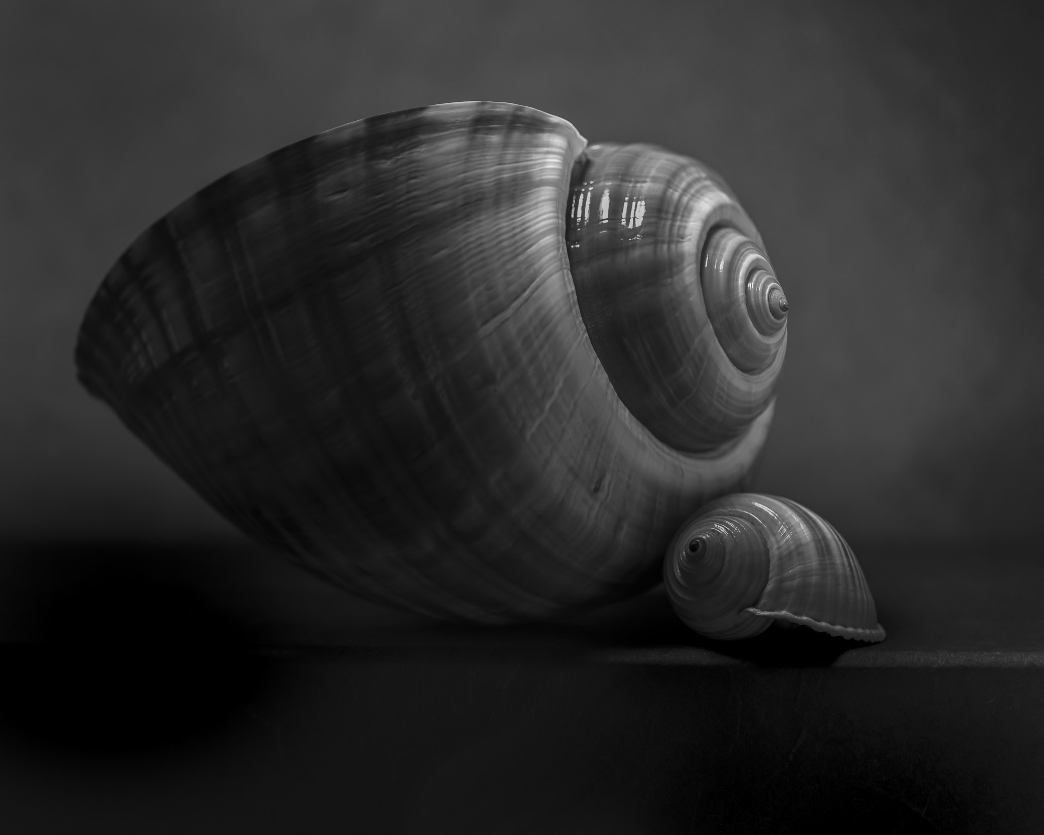 Two_shells